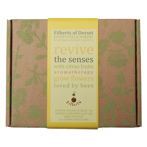 Filberts-of-Dorset-ReviveGiftBox