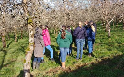 Courses at Twinways Orchard