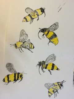 Black and yellow bee drawings
