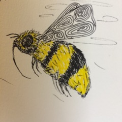 Close up of bee drawing
