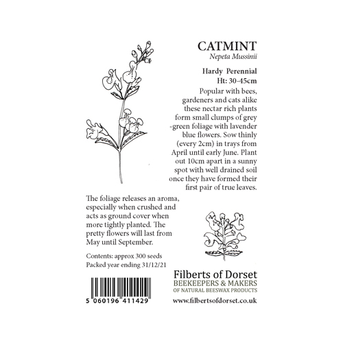 Catmint Seed